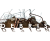 Debris Design Competition