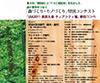 第4回 間伐材を生かした「森づくり・モノづくり」コンテスト