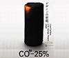 Low Carbon Life-design Award 2009
