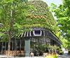 第16回 屋上・壁面緑化技術コンクール