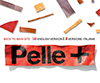 Pelle + 2010