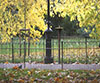 Royal Parks Foundation Drinking Fountain Competition
